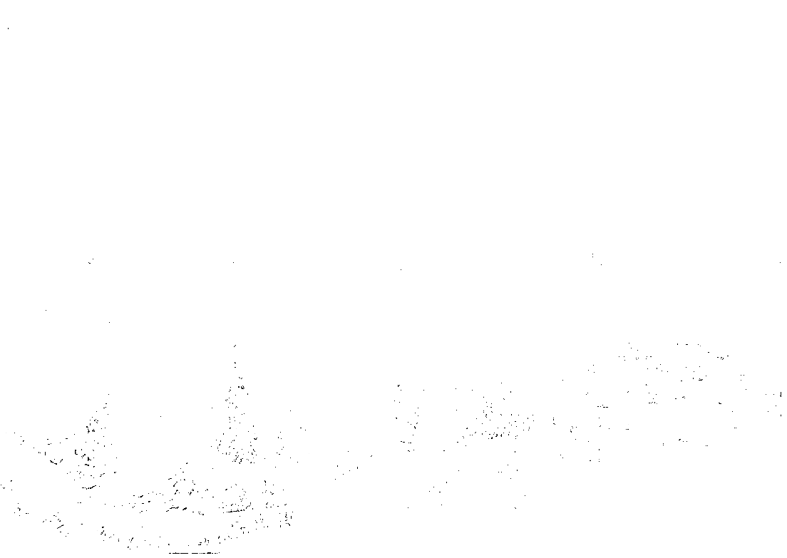 Makeshift German military cemetery somewhere in the Ukraine, summer 1941