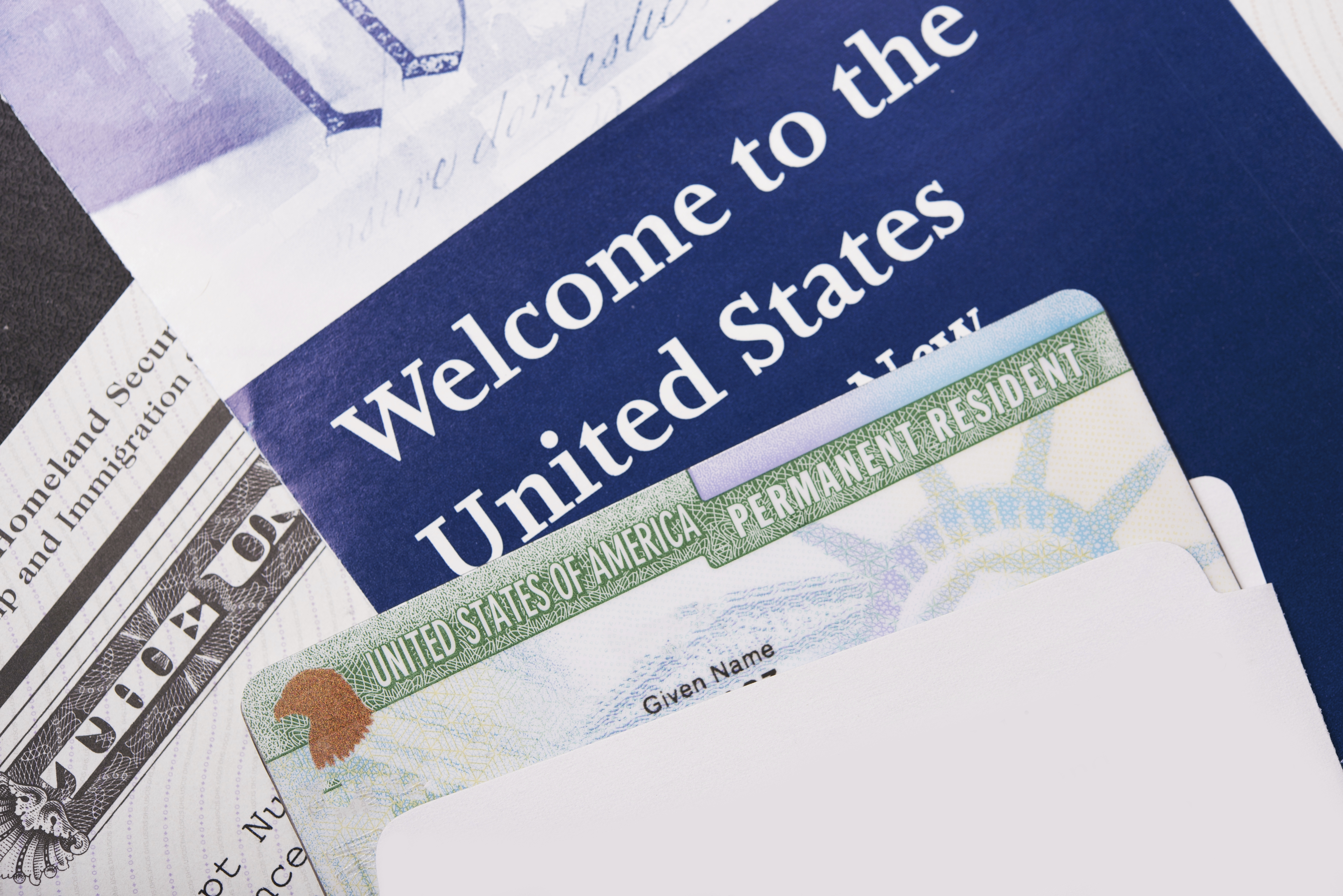 The Debate in the United States over Immigration (Hoover Institution Press Publication)