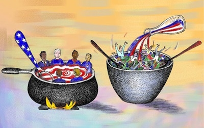Image result for melting pot vs salad bowl theory