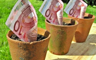 The Euro and the Tragedy of the Commons